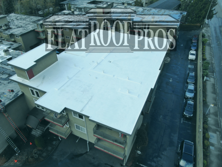 6 Signs of Damage in Flat Roof