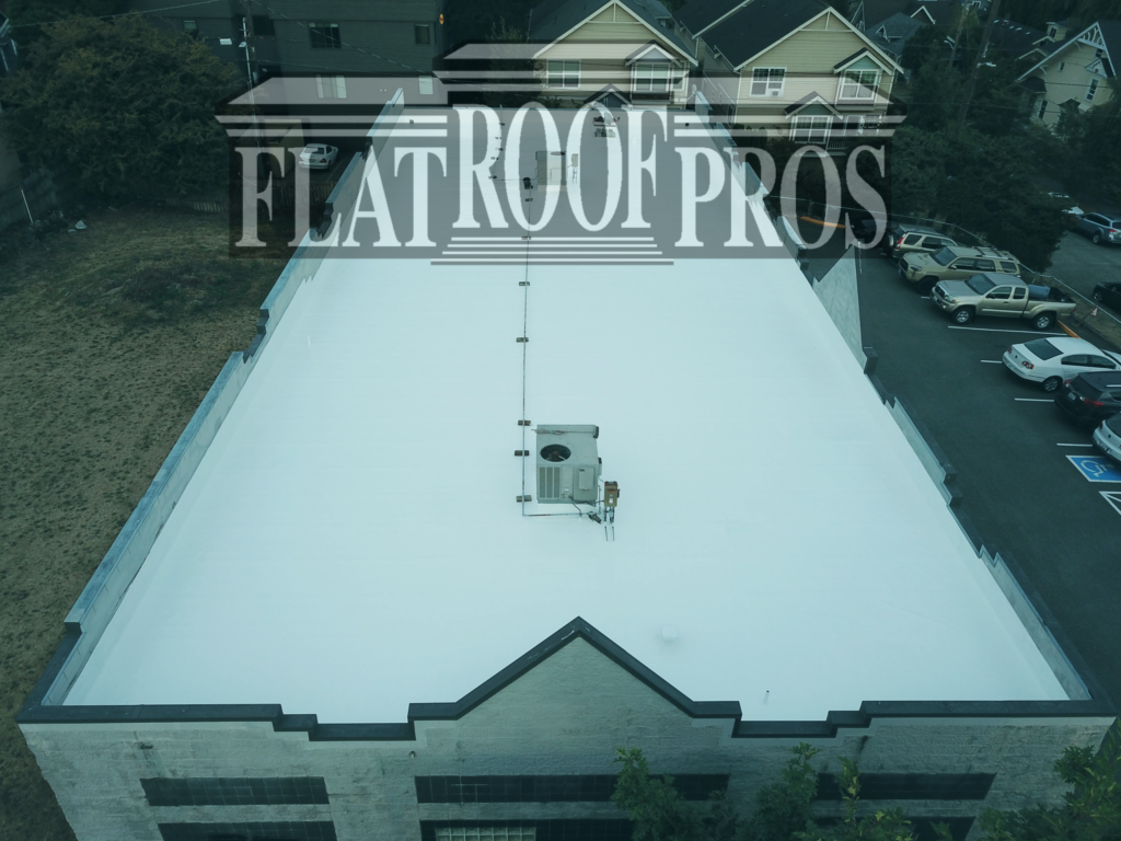 flat roof pros in freemont